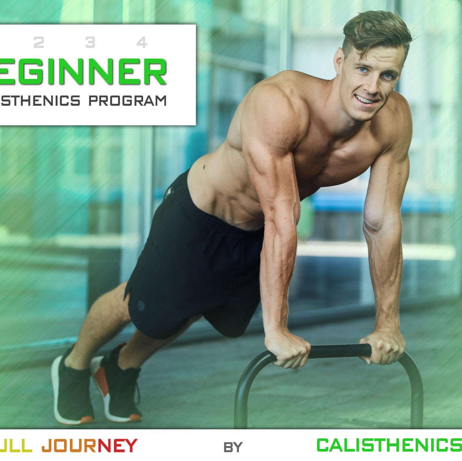 Beginner calisthenics program