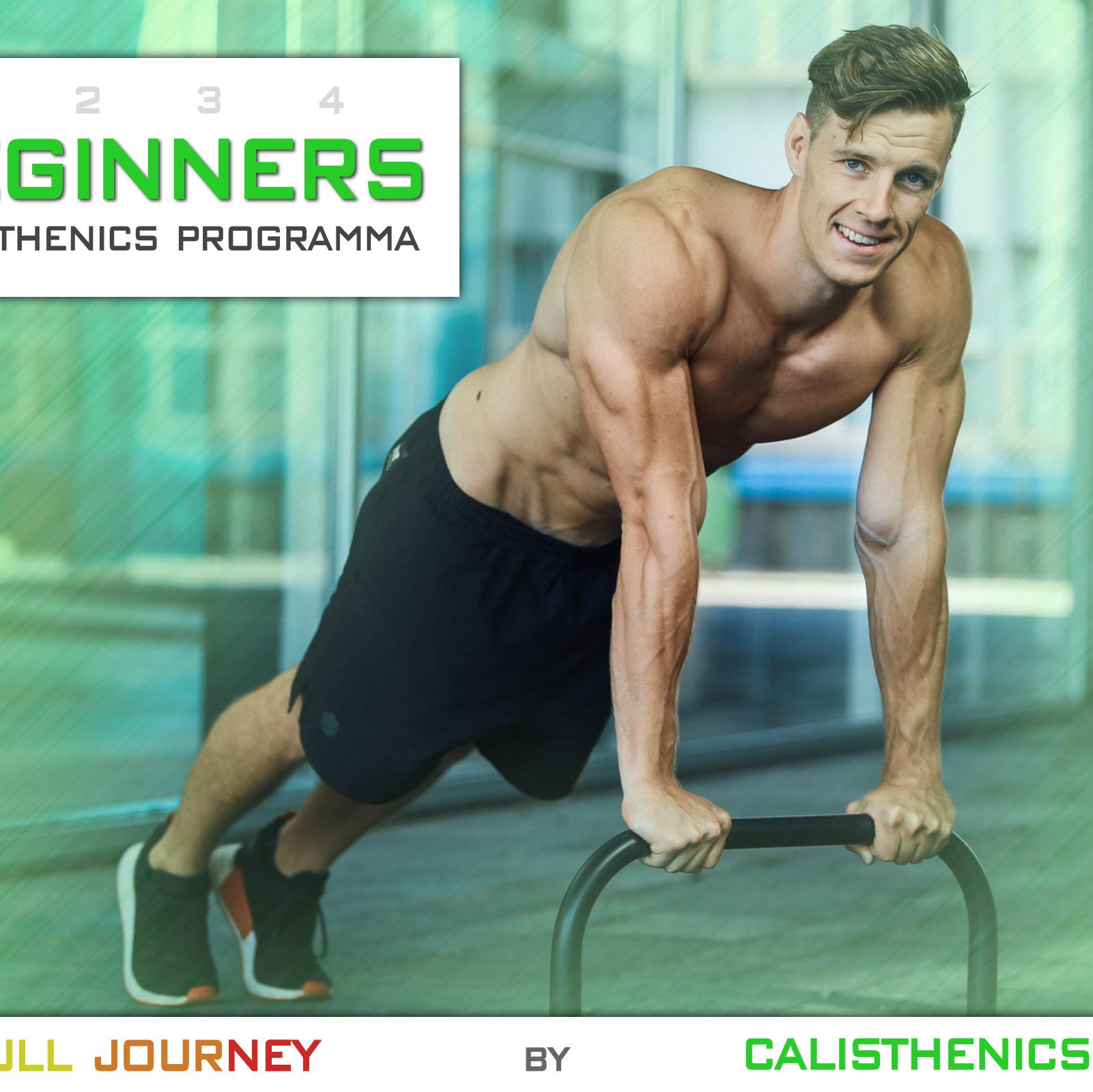 Beginners Calisthenics Workout Programma