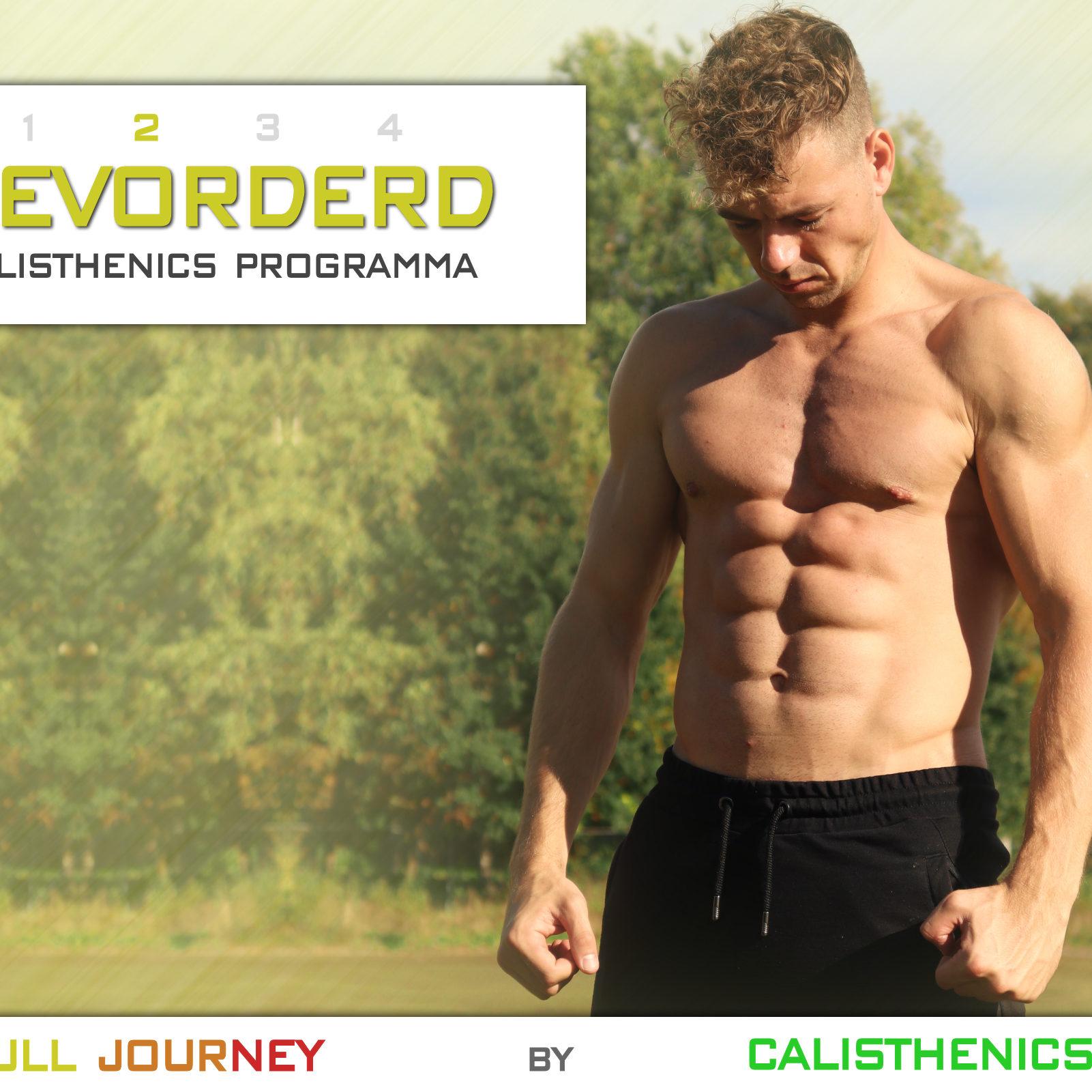 Gevorderd Calisthenics Workout Programma