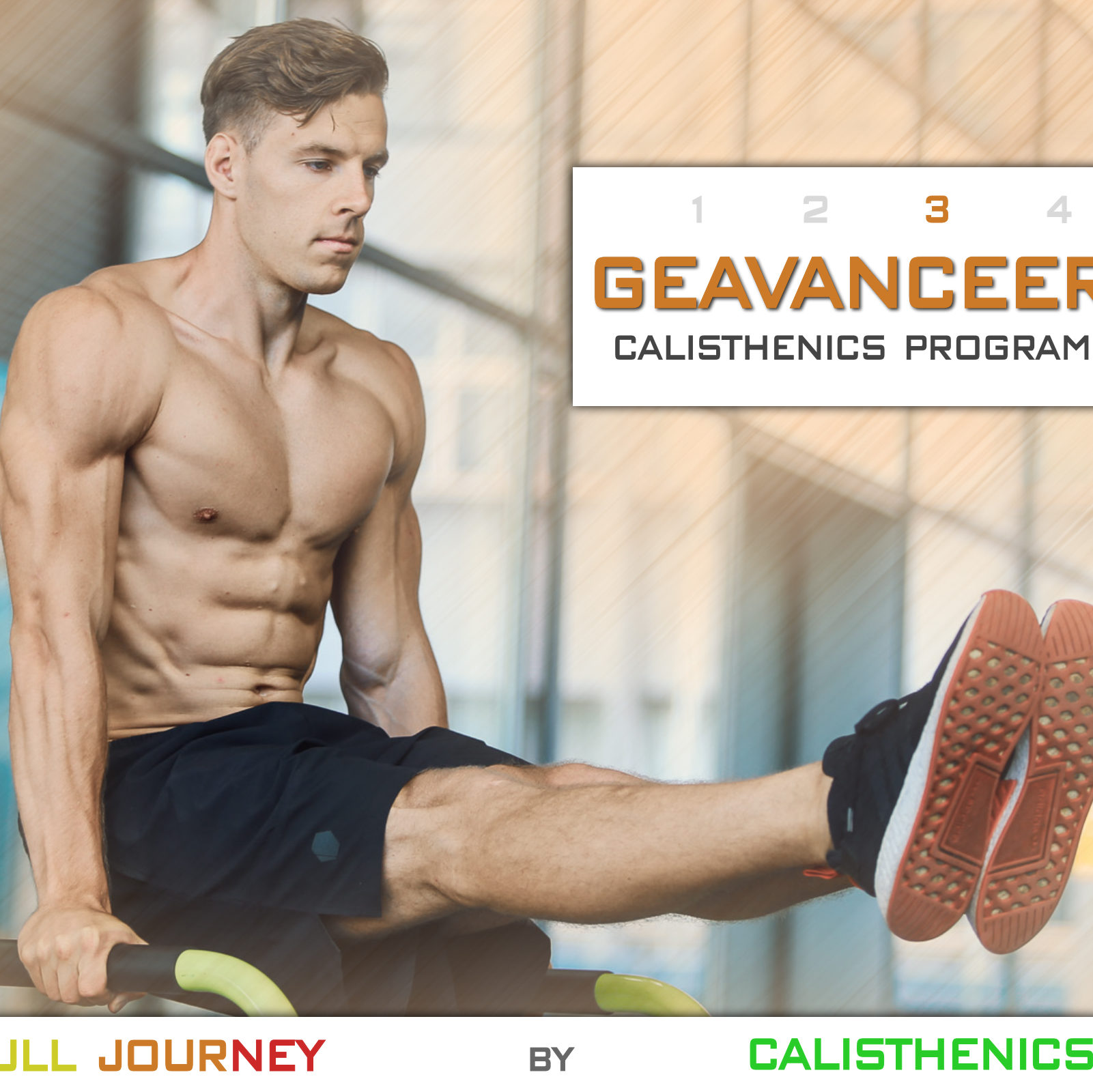 Geavanceerd Calisthenics Workout Programma
