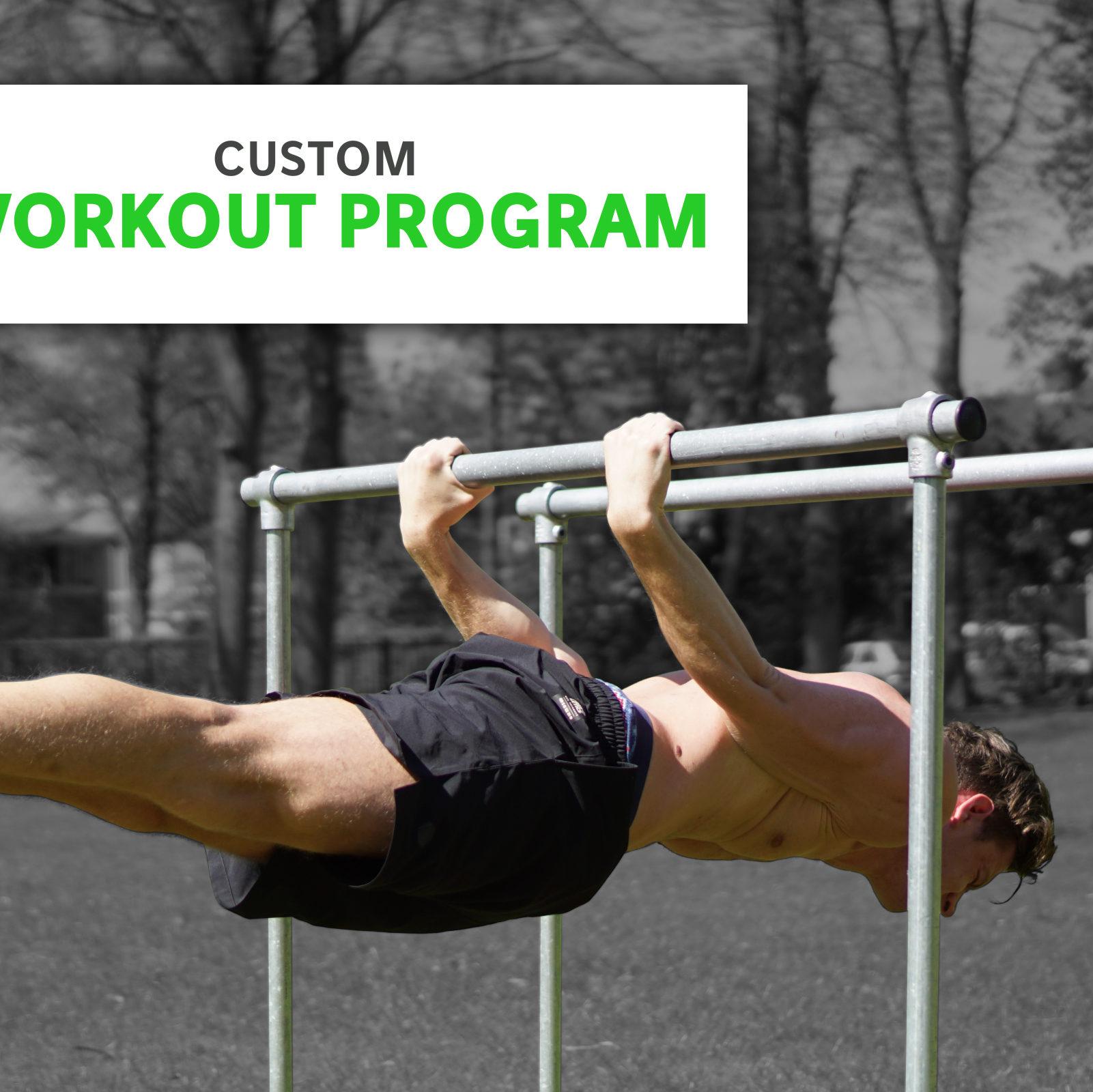 Costum workout program calisthenics