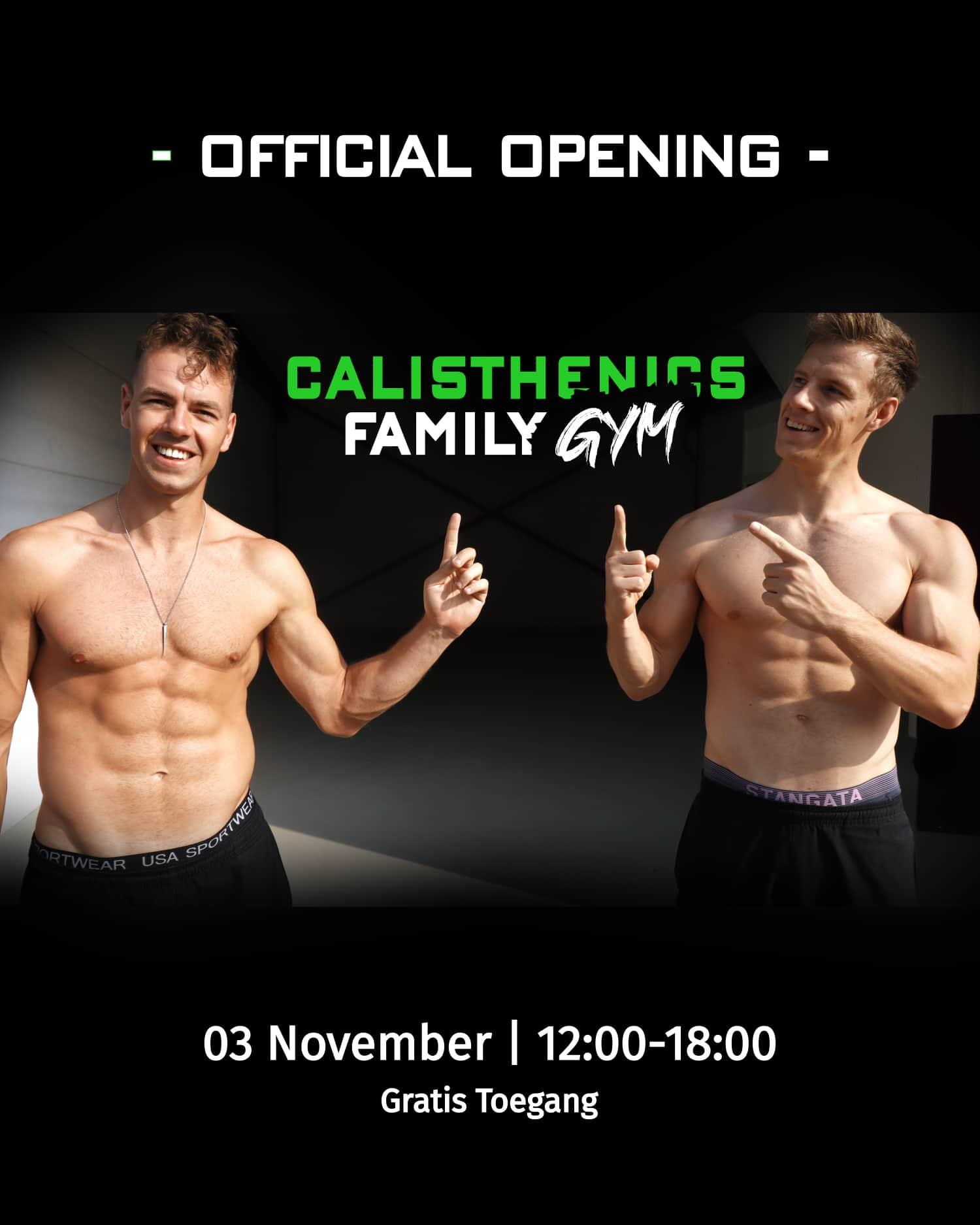 Calisthenics Family Gym
